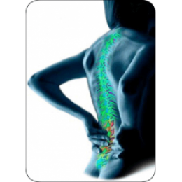 joint_disorders-228x228_grid.png